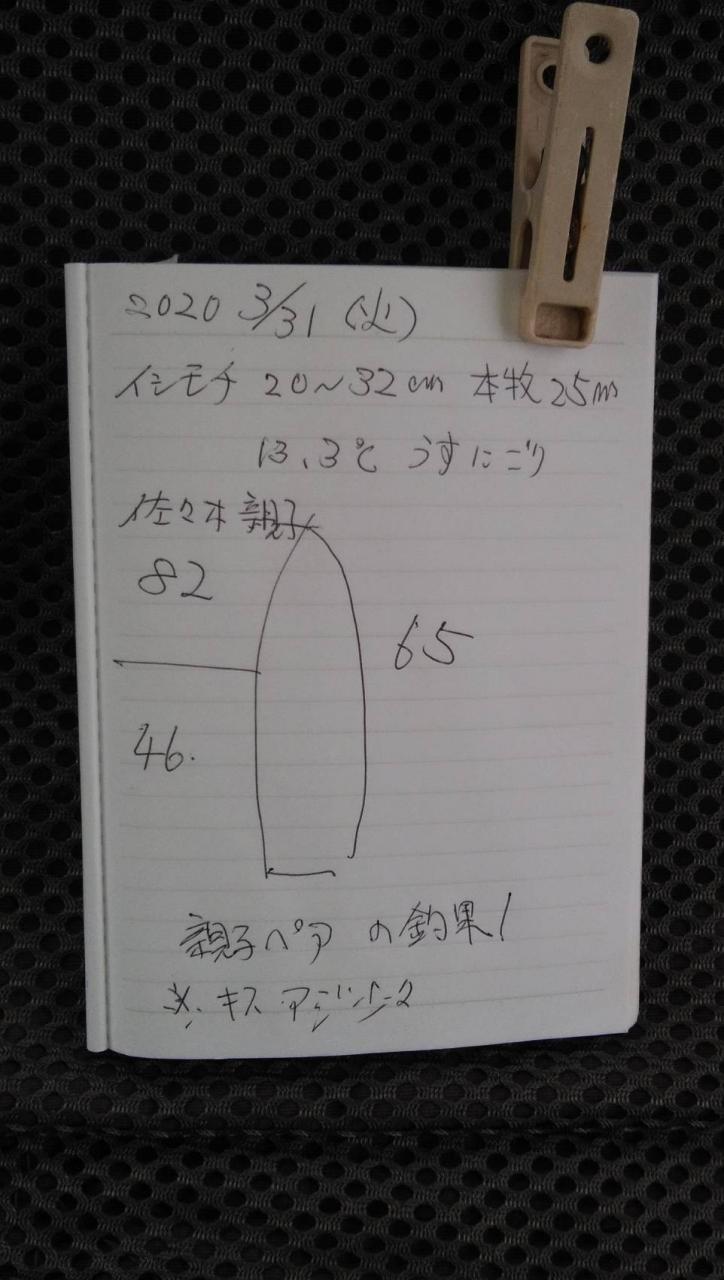1585647026-2-8881-ck.jpg