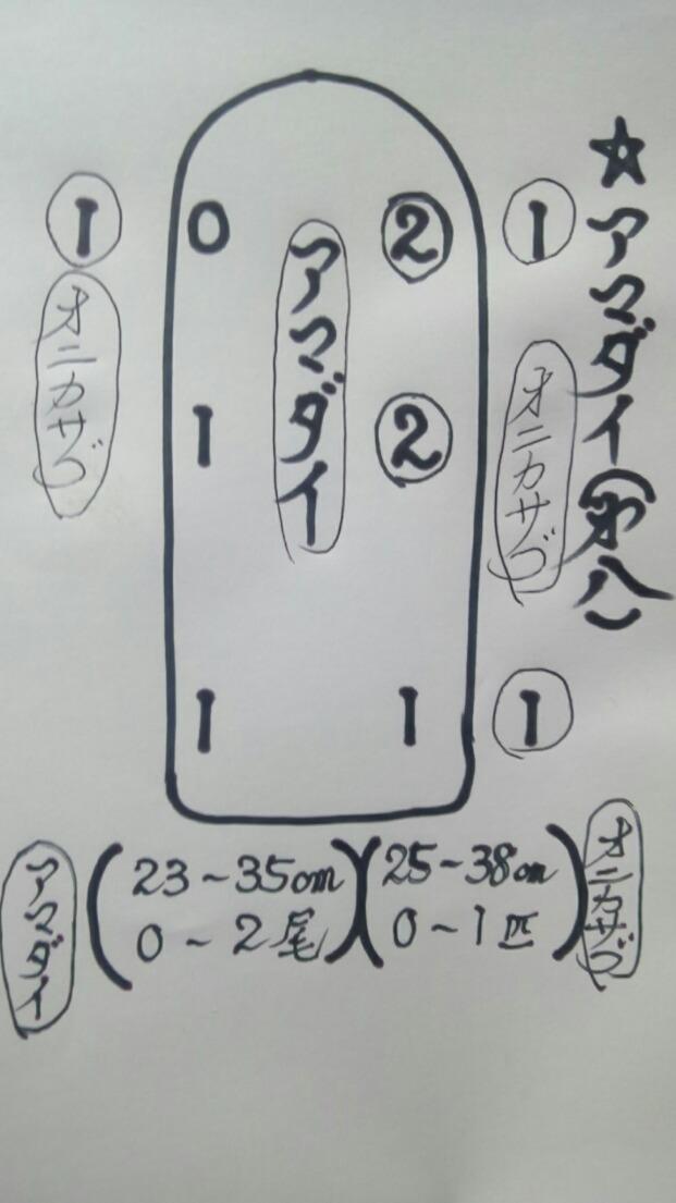PD1-1575940502-6-911.jpg
